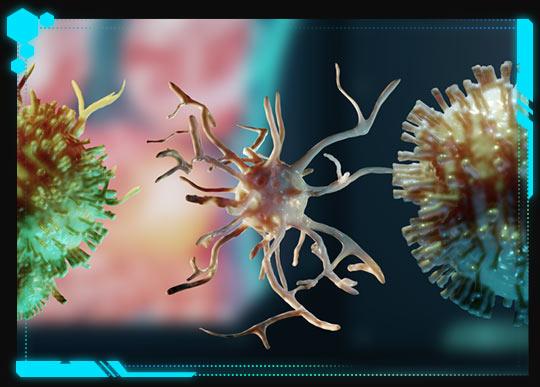Der Virus mutiert in zahlreichen Formen